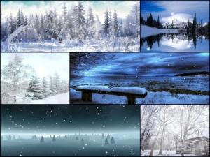 Снежная зима с сильным и холодным ветром на обоях